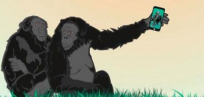 La Sala Equis de Madrid vuelve, por un día, a su esencia, con la proyección de obras eróticas especiales de Premios Bonobo