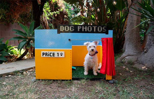 La inventora Simone Giertz crea un fotomatón para perros con LEGO Mindstorms