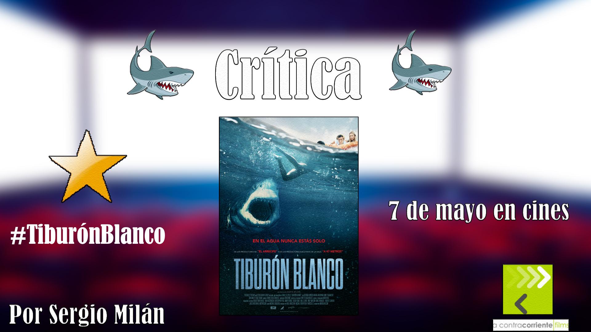 'Tiburón Blanco': No os confundáis, el tiburón no es más malo que el guionista